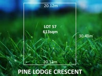 11 Pine Lodge Crescent, Grange, SA 5022
