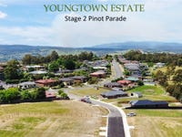 Stage 2 PINOT PARADE, Youngtown, Tas 7249