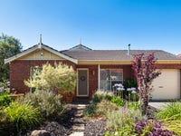 11 Exmoor Avenue, Oaklands Park, SA 5046