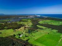 93 Jobsons Lane, Mitchells Island, NSW 2430