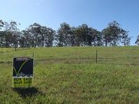 Lot 7 Christine Close - Wirrimbi Estate, Wirrimbi, NSW 2447