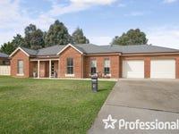 14 Ranken Street, Eglinton, NSW 2795