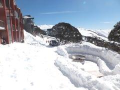 518 Arlberg, Mount Hotham, Vic 3741