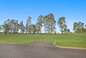 Lot 120, Lifestyle Drive, Singleton, NSW 2330