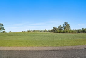 Lot 117, Lifestyle Drive, Singleton, NSW 2330