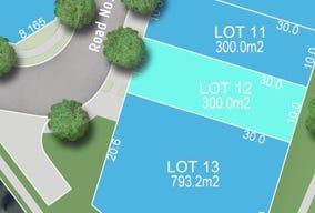 Lot 12 (no.33) Hortsmann Cct, Jordan Springs, NSW 2747
