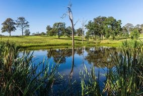 Lot 3317, Providence Drive, Gledswood Hills, NSW 2557