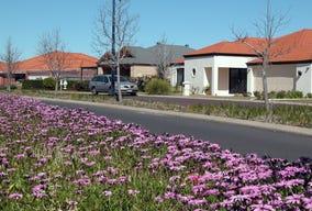 Lot 161, 161 Lochart Road, Australind, WA 6233