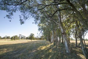 15 (Lot 9) Stringybark Drive Bingara Gorge Wilton, Wilton, NSW 2571