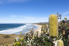 Lot 529, 25 Somervale Road, Sandy Beach, NSW 2456