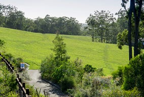 Lot 205, Palmview Forest Drive, Palmview, Qld 4553