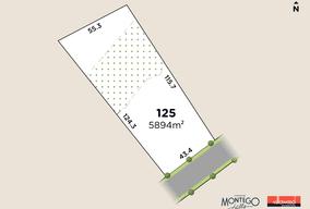 Lot 125 Homestead Circuit, Montego Hills, Kingsholme, Qld 4208