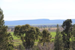 Lot 1 Rankins Springs Road, Myall Park, NSW 2681