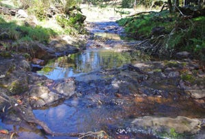26 Nashs Road, Dorrigo, NSW 2453