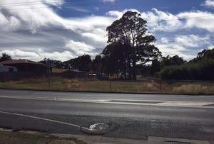 991 Ridgley Highway, Ridgley, Tas 7321