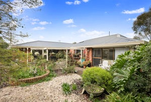 18 Wolbers Road, Dingley Village, Vic 3172