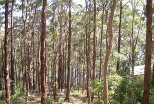 Lot 28, 25 New Forster Rd, Smiths Lake, NSW 2428