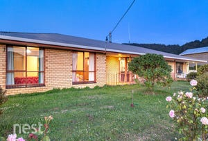 590 Woodbridge Hill Road, Gardners Bay, Tas 7112