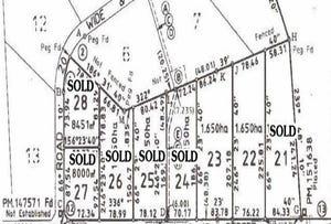 Lot 22 & 23, Lots 22 & 23 Hall Street, Willow Tree, NSW 2339
