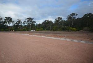 Lot 411 Timbertown Estate - Blacksmith Street, Wauchope, NSW 2446