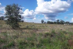 NEWELL HIGHWAY, Peak Hill, NSW 2869