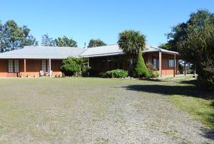 293 Gillespies Road, Nabowla, Tas 7260