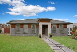 41 Mosaic Avenue, The Ponds, NSW 2769
