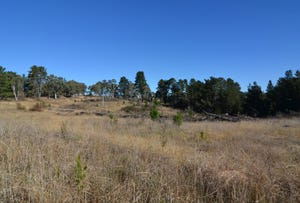 Lot 15 Forest Ridge Drive, Wallerawang, NSW 2845