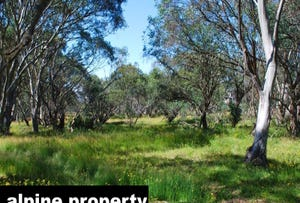 Lot 110, No 36 Horsehair Bend, Dinner Plain, Vic 3898