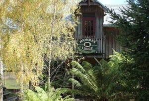 14 Peters Street, Tullah, Tas 7321
