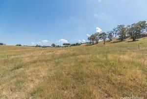 Lot 16 Tarnagulla Estate, Orange, NSW 2800
