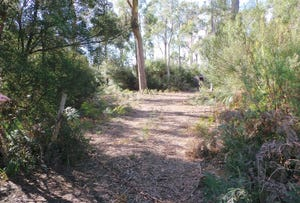 Lot 6 Gardiner Street, Squeaking Point, Tas 7307