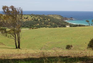 Lot 2, Lot 2 Bunga Beach Road, Murrah, NSW 2546