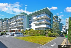 204/17 Jean Wailes Ave, Rhodes, NSW 2138