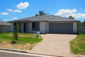 45 Tulipwood Cresent, Tamworth, NSW 2340
