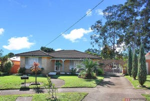 6 Rowe Place, Greystanes, NSW 2145