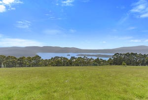 199 Lookout Road, Port Arthur, Tas 7182