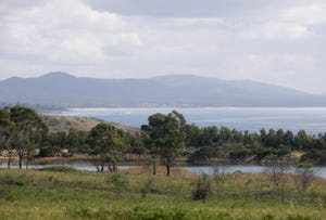 21506 Tasman Highway, Four Mile Creek, Tas 7215