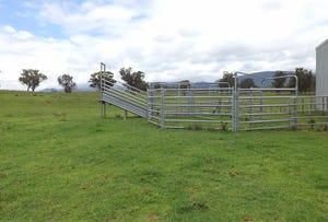 Lot 10 Golden Highway, Jerrys Plains, NSW 2330