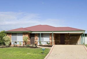 17 Starlet Court, Maddington, WA 6109