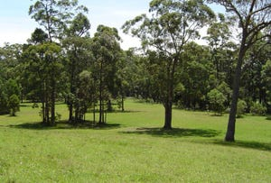 Lot 107 Spring Valley Way, Little Forest, NSW 2538