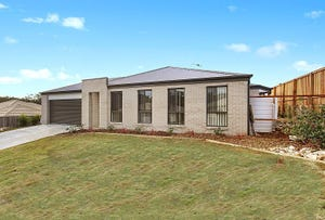 7 Echidna Street, Port Macquarie, NSW 2444