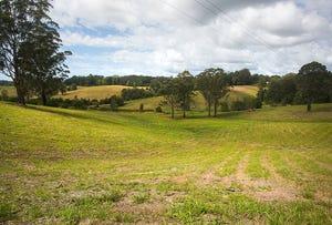 Lot 574 Irvines Road, Newee Creek, NSW 2447