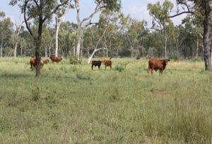"""Bingeringo"" Cattle Property, Gregory Development Road, Charters Towers, Qld 4820"