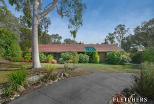 165 Knees Road, Park Orchards, Vic 3114