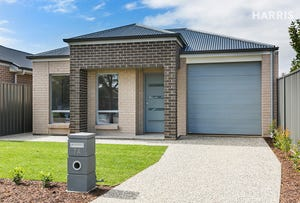7 Brinkworth Street, South Plympton, SA 5038