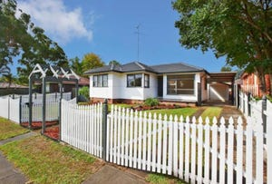 46 Greenleaf Street, Constitution Hill, NSW 2145