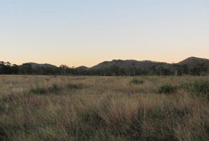 Mount Larcom, address available on request
