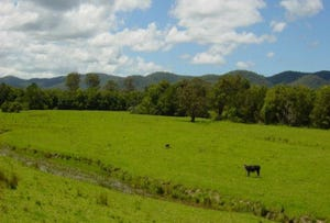 Lot 46 Markwell  Rd, Markwell, NSW 2423