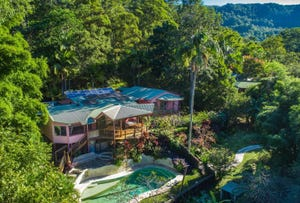 680 Left Bank Road, Mullumbimby Creek, NSW 2482
